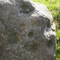 Prehistoric carved stone