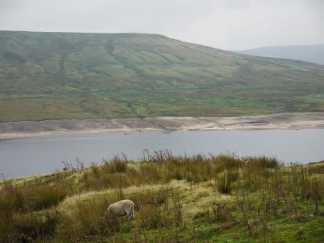 Scar House Reservoir
