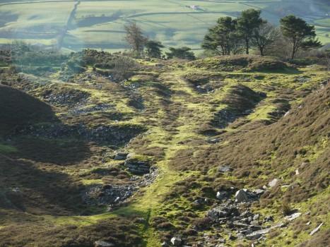 Scot Gate Ash Quarry
