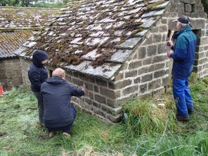 Re-pointing a small outbuilding with lime mortar