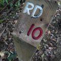 Orienteering marker