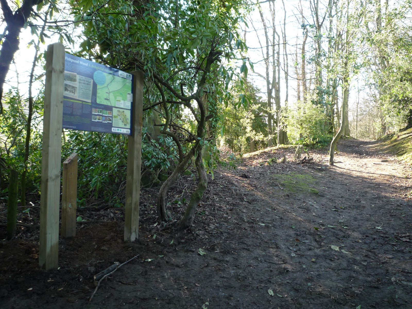 Wonderful image of New information panels for Fishpond Wood Nidderdale Landscape  with #7F8348 color and 1600x1200 pixels